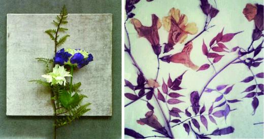 cuadros flores naturales